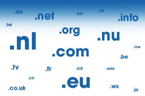nederlandse domein registratie