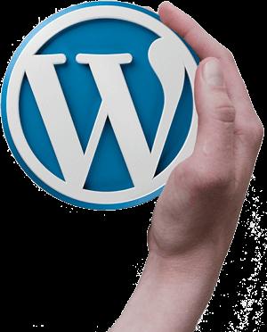 Managed WordPress hosting vergelijken